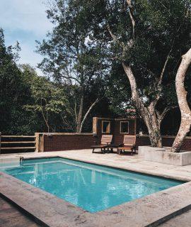 piscine extérieure avec terrasse en béton et transats en bois sous des arbres