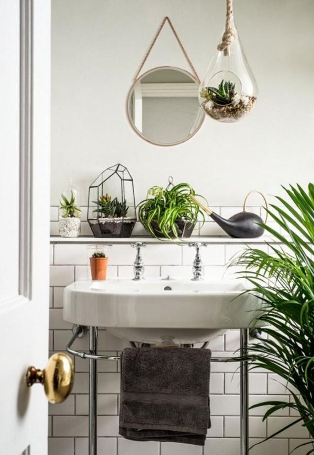 plante salle de bain
